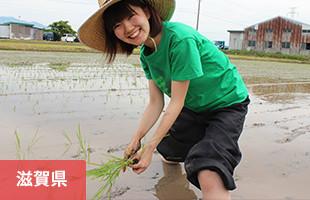 滋賀県東近江市 生物多様性保全